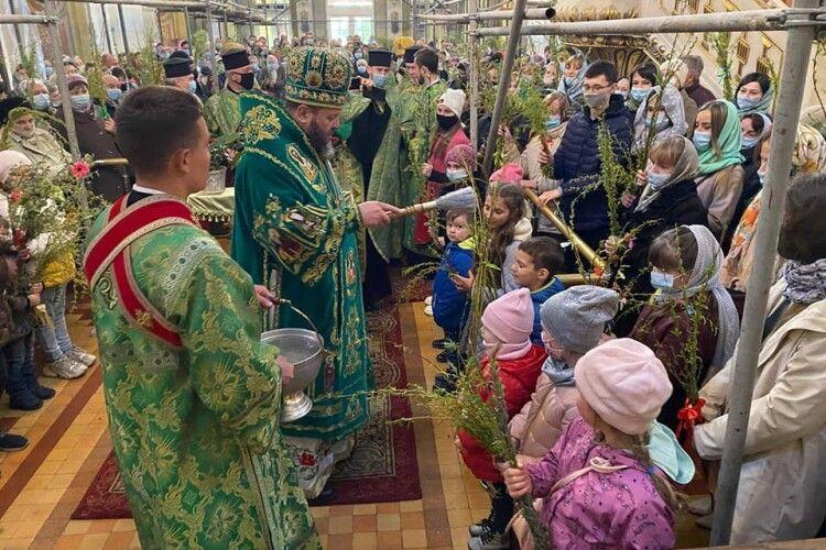 У кафедральному соборі Луцька вербові гілки найперше освятили дітям