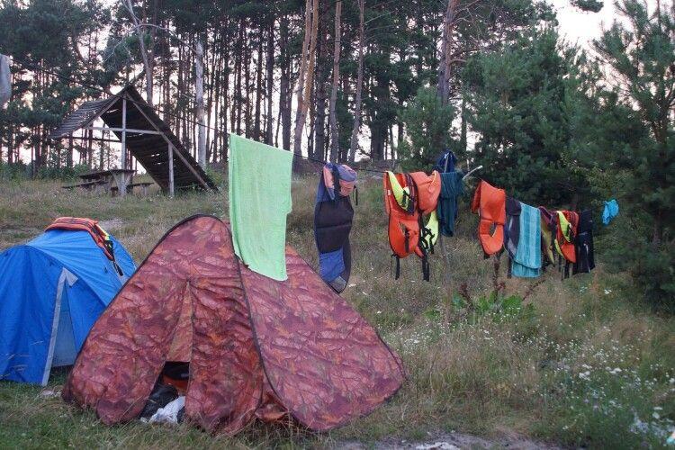 Лісівники Маневиччини виявили несподіваних гостей (Фото)