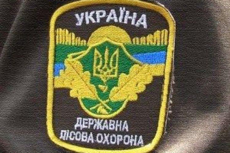 У Ківерцівському районі порушник оперативно сплатив 8 тисяч за самовільну рубку
