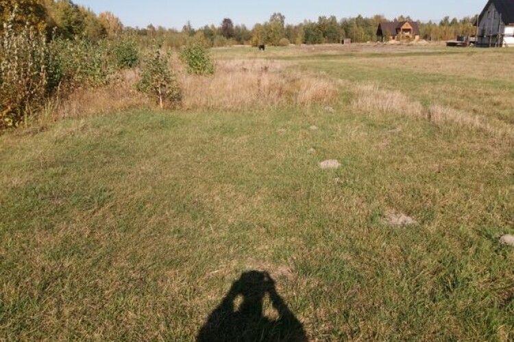 У Шацьку хочуть повернути у комунальну власність землі, які роздали «не тим» власникам