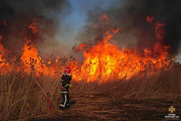 Німеччина допомогла Україні з обладнанням для гасіння пожеж у Чорнобильській зоні