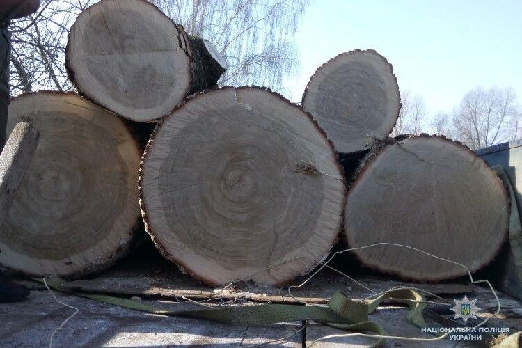 На Волині затримали дві вантажівки, завантажені підозрілим лісом