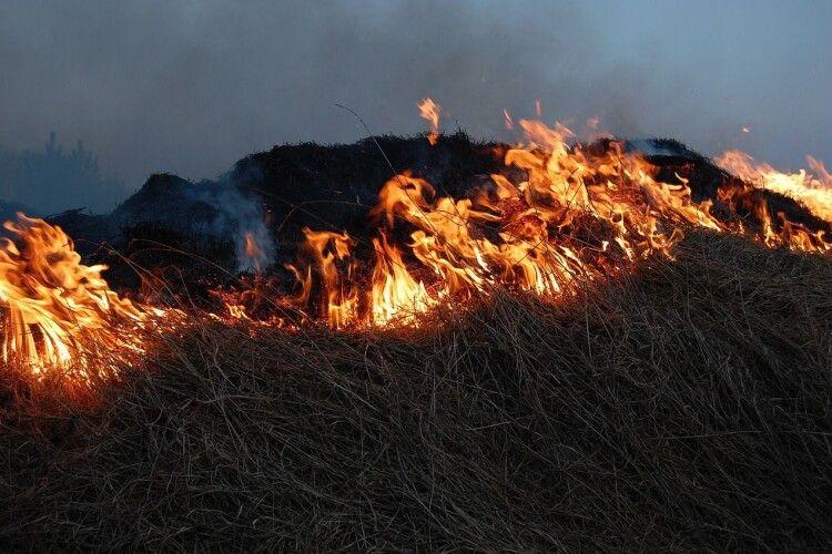 Через спалювання сухої трави ледь не згорів цвинтар