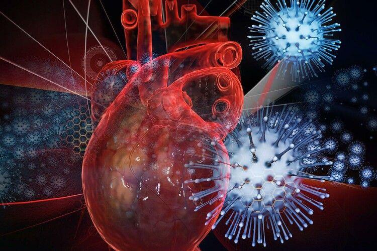 Медики показали, як COVID-19 пошкоджує серце