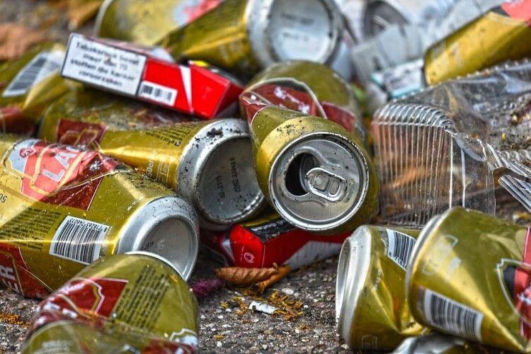 Зник бак: оглядовий майданчик в Луцьку потопає в смітті (Фото)