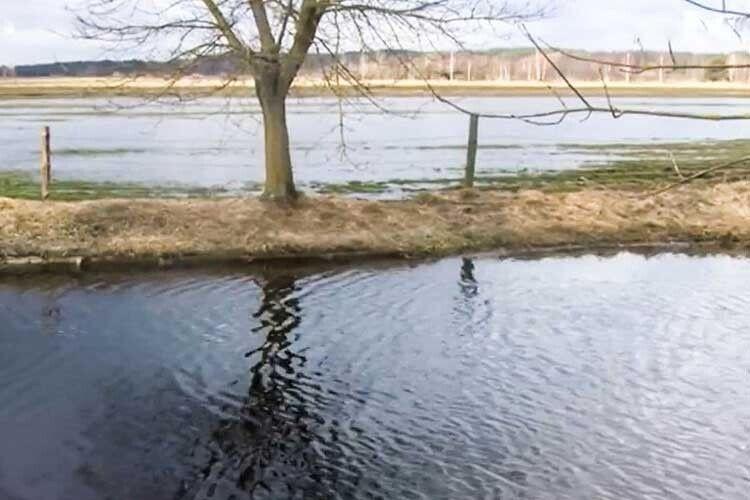 Через весняну повінь на Ковельщині затоплені пасовища ігороди