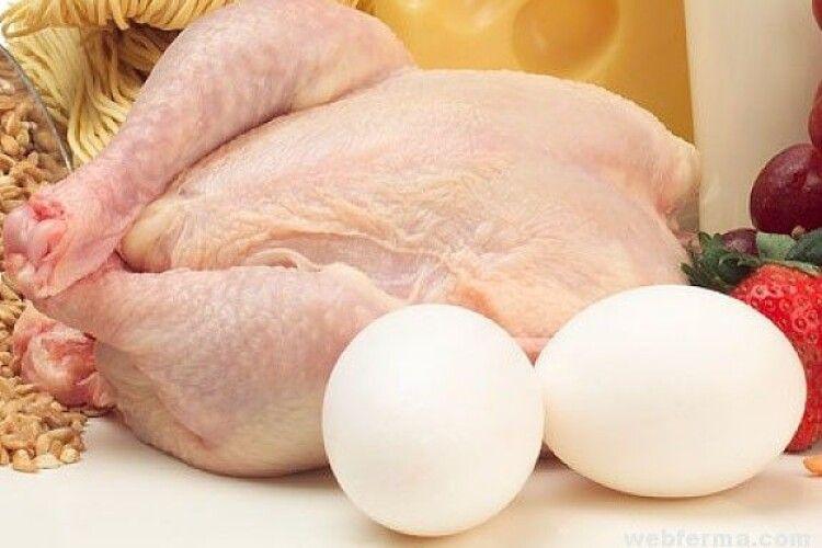Невдовзі у магазинах з'явиться штучне м'ясо та штучні яйця