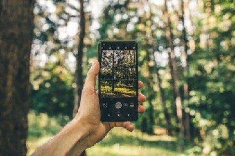 Волинський ліс вже у смартфоні!