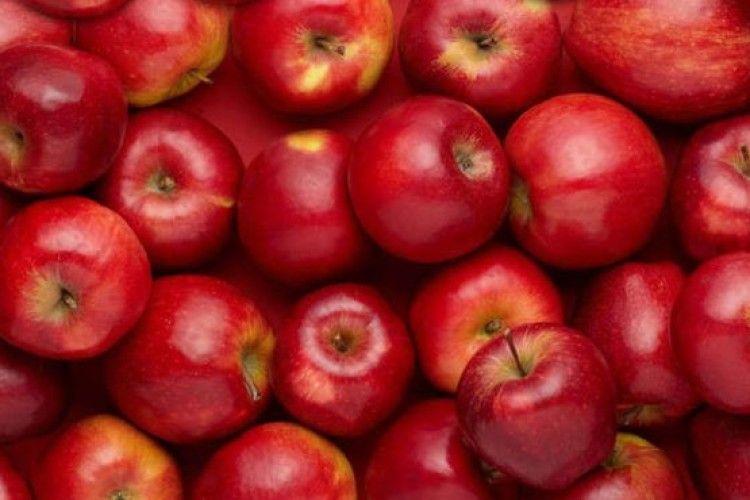 Через протести у Франції зріс попит на українські яблука
