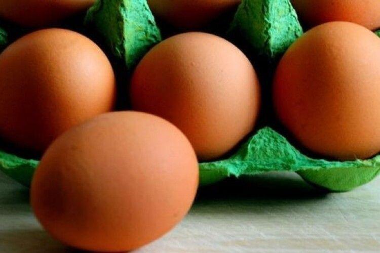 Суд «раптово» випустив: підозрюваного у зґвалтуваннях закидали яйцями у Рівному