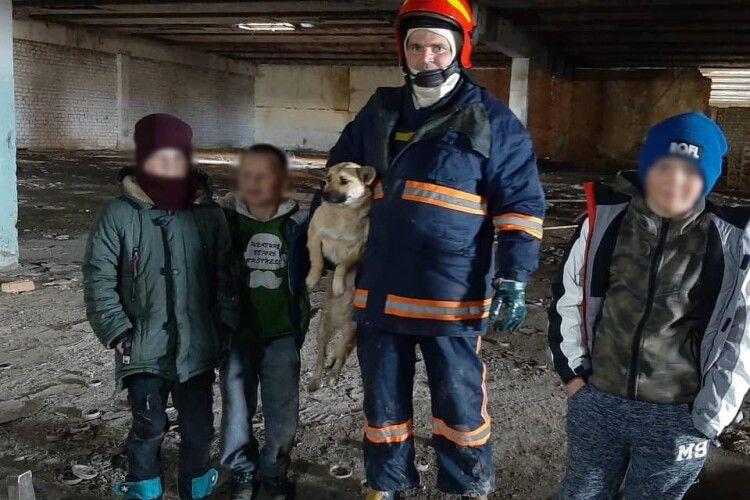 Трійко хлопчаків та бійці ДСНС врятували з халепи пса (Фото)