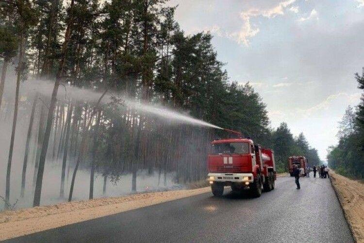 У лісовій пожежі загинула одна людина, ще дев'ять - госпіталізовано