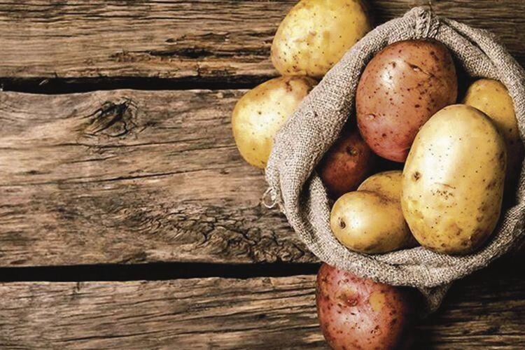 Під землею птиця кубло звила і яєць нанесла... Суперові рецепти страв із картоплі