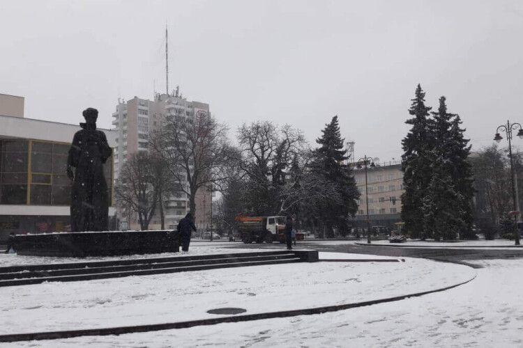 У центрі Луцька з'явилася величезна Леся Українка (Фото)