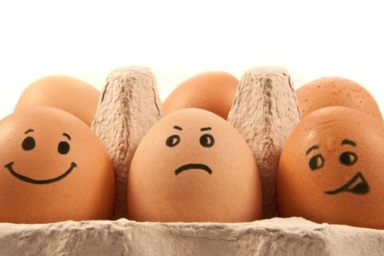 В Україні скорочується виробництво яєць