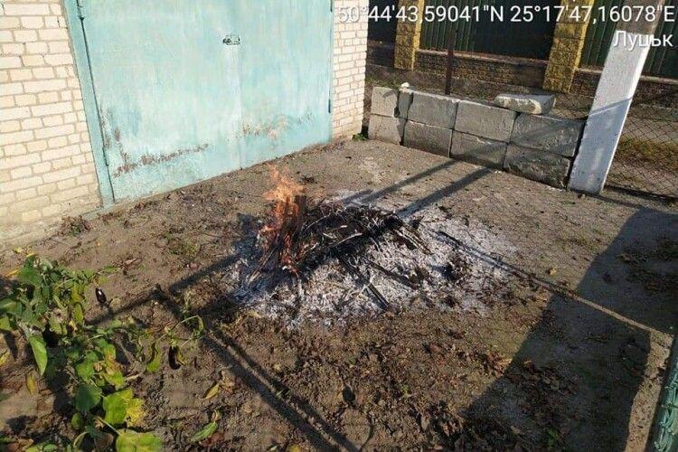 Лучанина оштрафують за спалення сміття