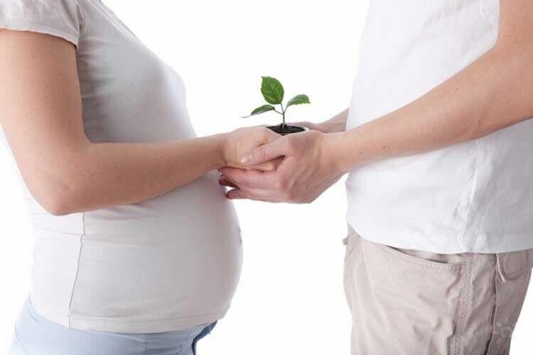 Перш ніж стати батьками…