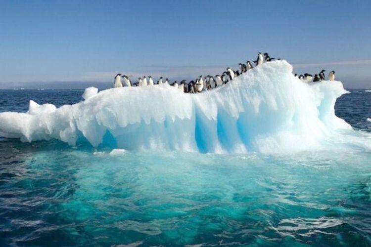 Вперше заісторію Антарктики температура перевищила 20градусів