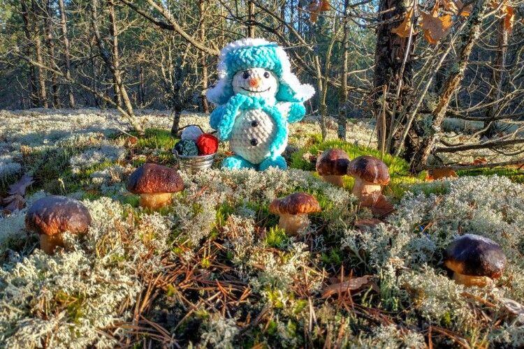 На Рівненщині чоловік за компанію зі сніговиком «накосили» у новорічному лісі білих грибів (Фото)