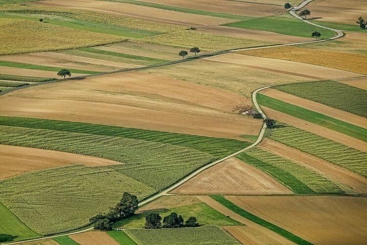 Рейтинг держпідприємств за розміром земельного банку