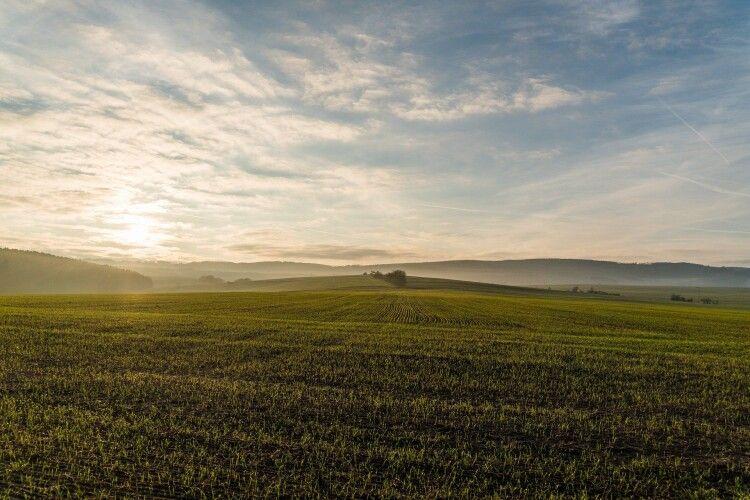 Волинянка безкоштовно отримала землю біля Шацьких озер вартістю 20 мільйонів гривень