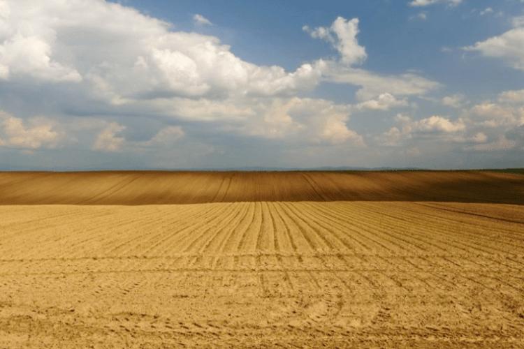 У Луцьку в орендаря хочуть забрати земелю вартістю майже 21 мільйон гривень