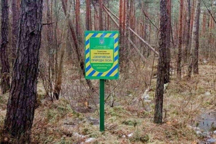 На Волині взяли під охорону 91 гектар пралісу