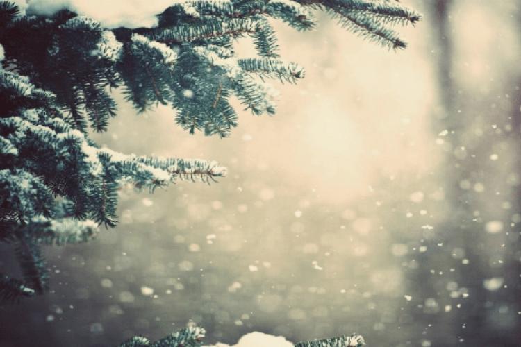 Синоптики уточнили прогноз погоди на Різдво