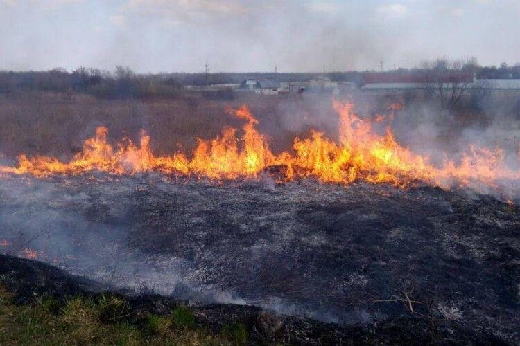 Синоптики попередили про надзвичайний рівень пожежної небезпеки на Рівненщині