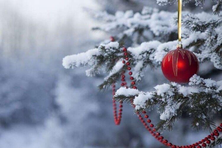 Синоптик розповів, чи випаде сніг на Новий рік
