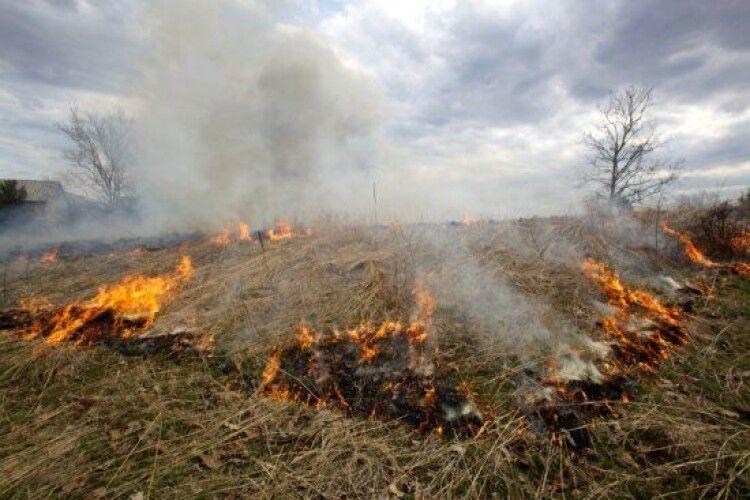Волинянам повідомили розмір штрафу за спалювання сухої трави