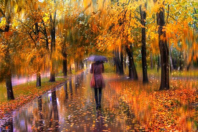 Погода на середу, 6 листопада: хмарно, а часом ще й дощ...