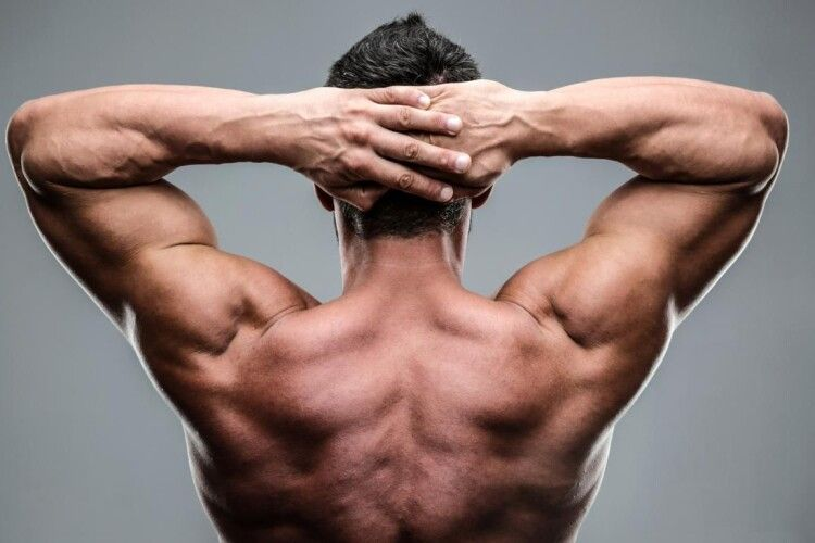 Вперше у світі людині пересадили руки та плечі