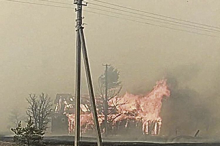Вогняний кінь Чорнобильської зони
