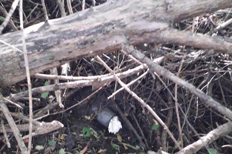 У Володимирі-Волинському знайшли місця скидів нечистот у річку Риловицю