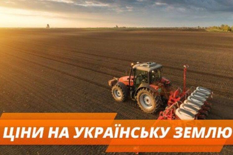 Стало відомо середня стартова ціна на землю на Волині та в Україні
