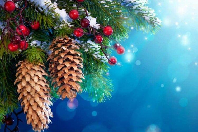 Завтра Волинь присипле снігом, а після Василя прийдуть морози