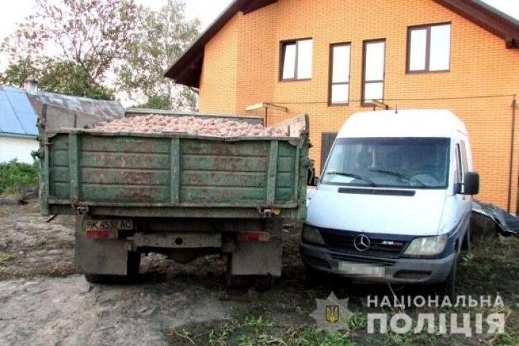 На Рівненщині 35-річний чоловік викрав вантажівку з картоплею (Фото)