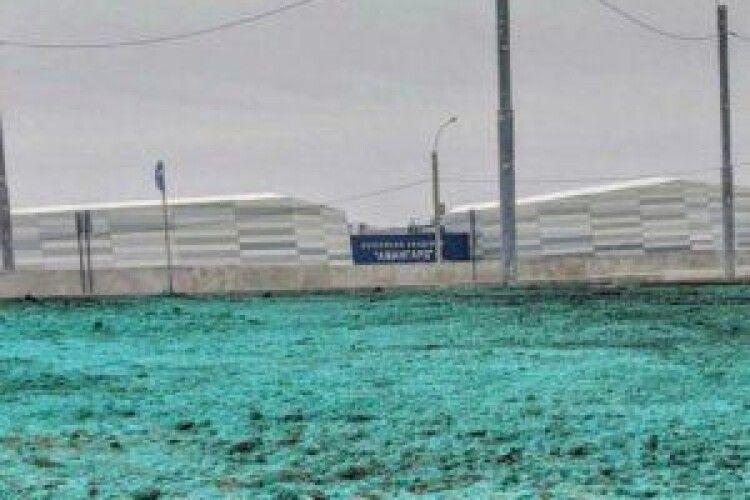 У російському місті пофарбували землю - очікували Путіна