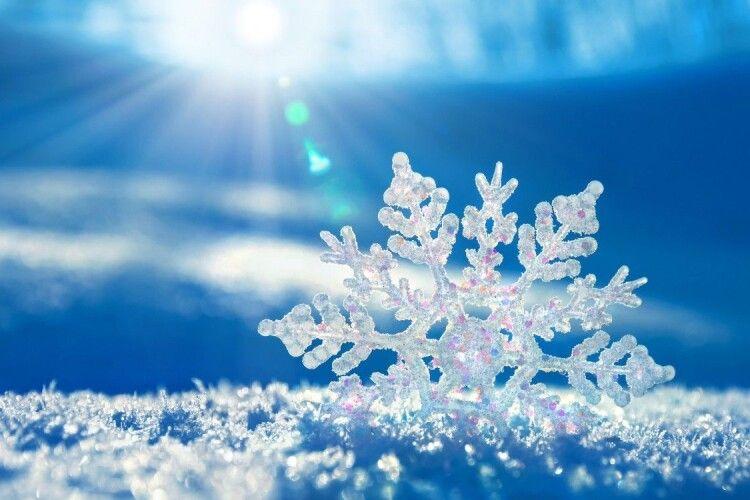 Як гарно! Лучан засипає лапатий сніг  (Відео)