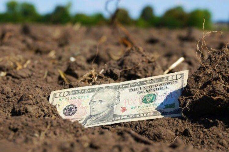 В Україні ціни на землю зростуть до 5 тисяч доларів за гектар
