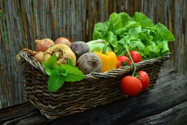 Більшість ранніх овочів таки подешевшала