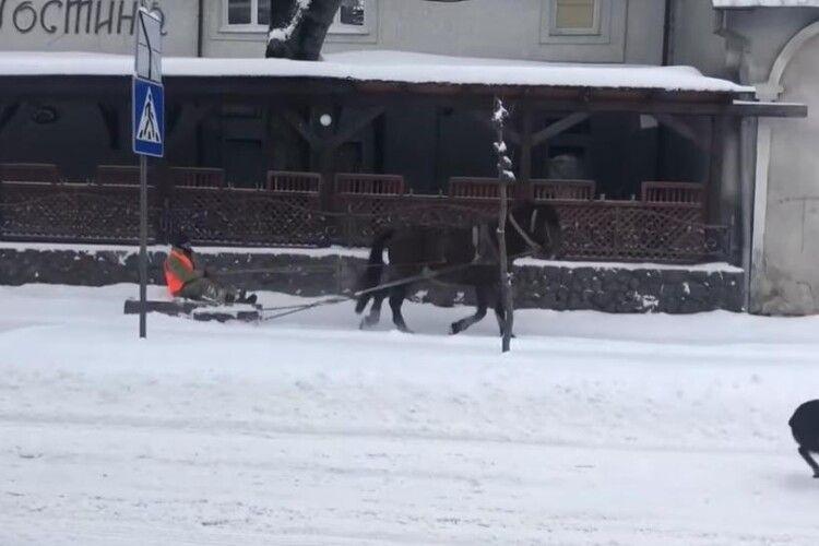 На Львівщині комунальники розчищають дороги разом з кіньми (Відео)