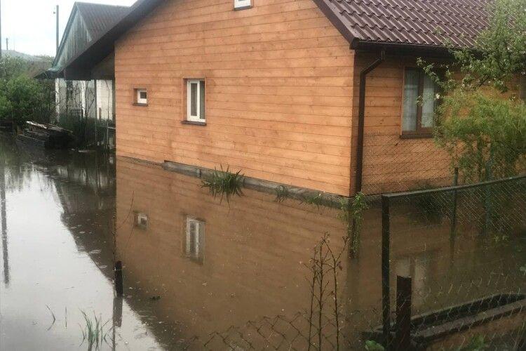 Через сильну зливу на Волині затопило городи та садки (Фото)