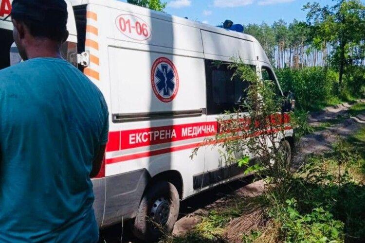 Волинянин під час самовільної порубки в лісі впав з дерева і серйозно травмувався
