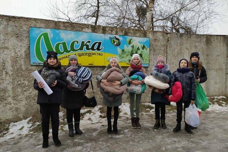 Луцькі семикласники допомогли чотирилапим кормом та лежаками (Фото)