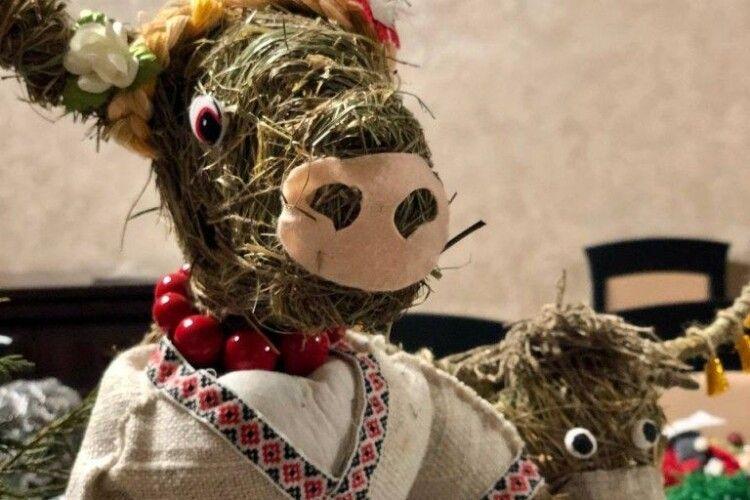 Найкраща еко-іграшка вийшла в учня з Любомльщини