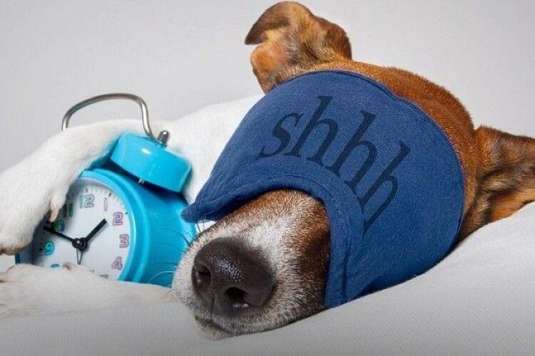 Волинська лікарка розповіла, в котрій годині треба лягати спати, щоб бути здоровими