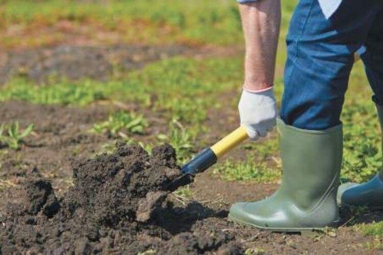 Рівнянин, обробляючи землю, натрапив на людські рештки