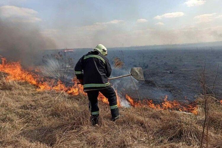 На Волині рятувальники встановили, хто підпалював траву